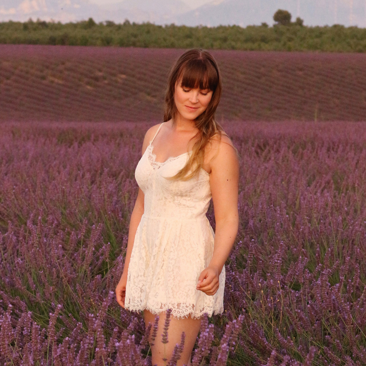 All the wonderful things: Fields of Lavender