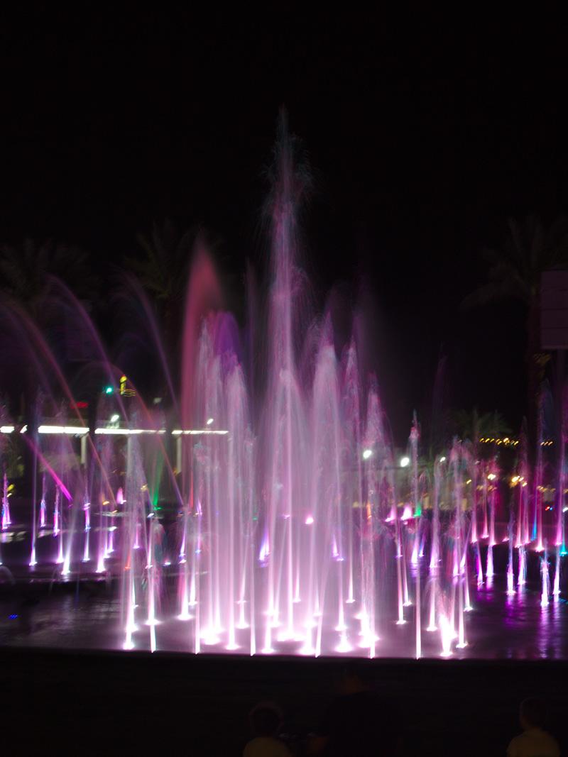 All the wonderful things - Israel Traveldiary #2 - Eilat, das Beste von Wüste & Meer; Musical Fountain Eilat