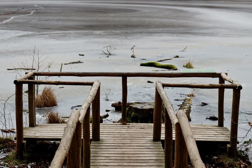 All the wonderful things: Auszeit aif Rügen - Hotelempfehlung und Ausflugs-Tipps; Nationalpark Jasmund