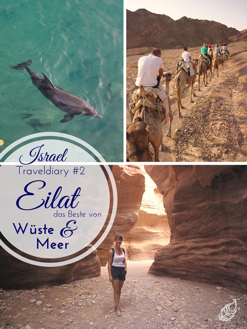 All the wonderful things - Israel Traveldiary #2 - Eilat, das Beste von Wüste & Meer